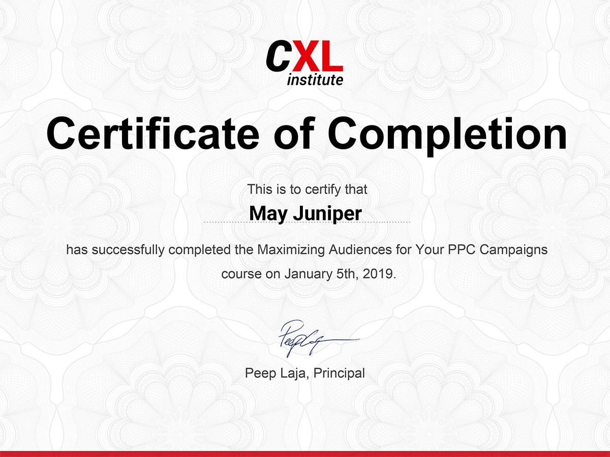 Maximizing Audiences For Your Ppc Campaigns Online Course Cxl