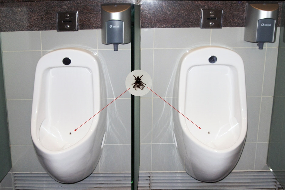 Urinals with a fly.