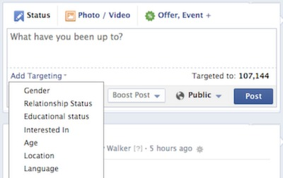 facebook advanced targeting example.
