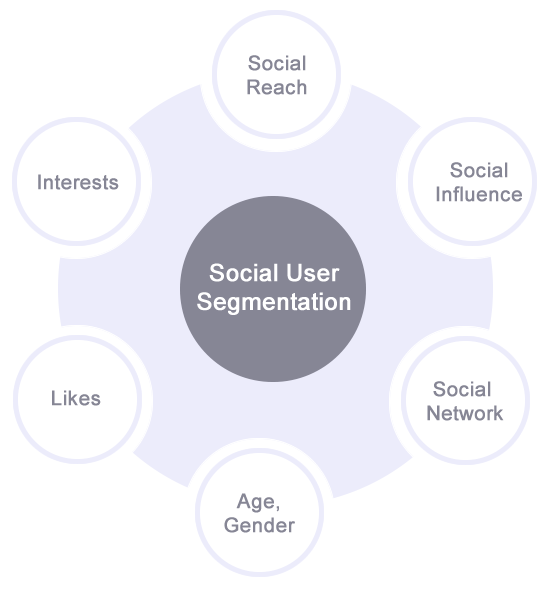 Social user segmentation visualization.