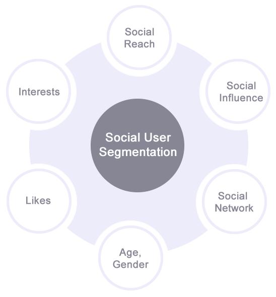 Social User Segmentation