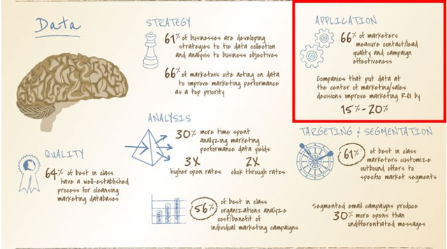 The Anatomy of an Effective Marketing Brain  Infographic