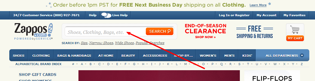 Zappos site search