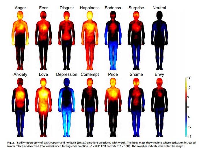 body map study of emotions related to words.