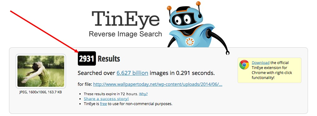 2931 results from tineye for a stock photo.