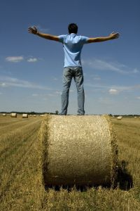example of stock photo of a man on a hay bale.