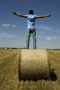 harvest-freedom-2-853035-m