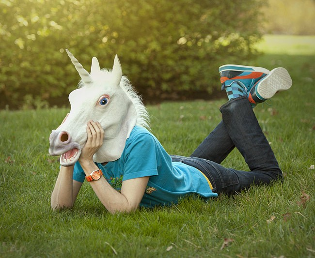 Unicorns and Optimizers