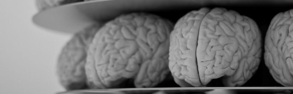 6 Neuromarketing Stimuli That Speak to the Old Brain