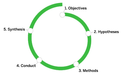 Frog's Research Learning Spiral