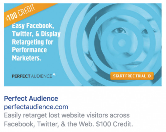 Perfect Audience Retargeting