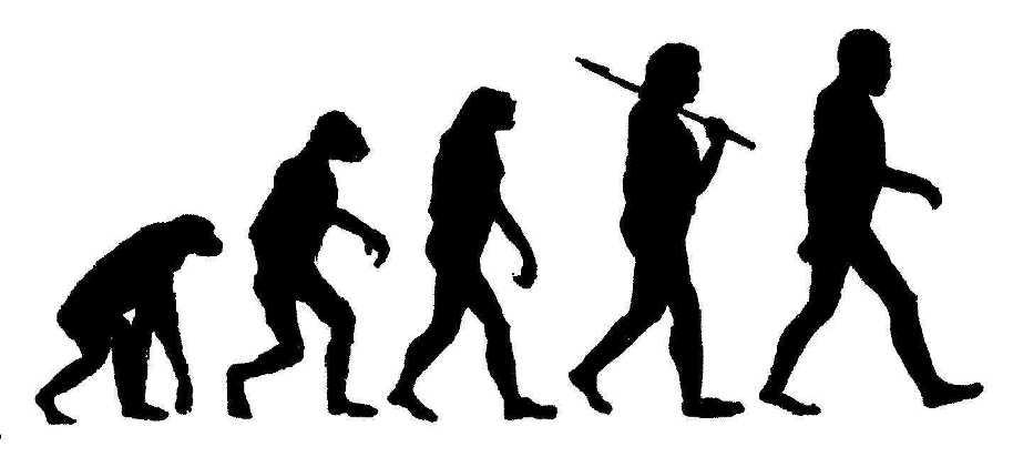 Survival of the Fittest Variation: Evolutionary Algorithms in Optimization