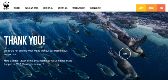 wwf donation thank you page