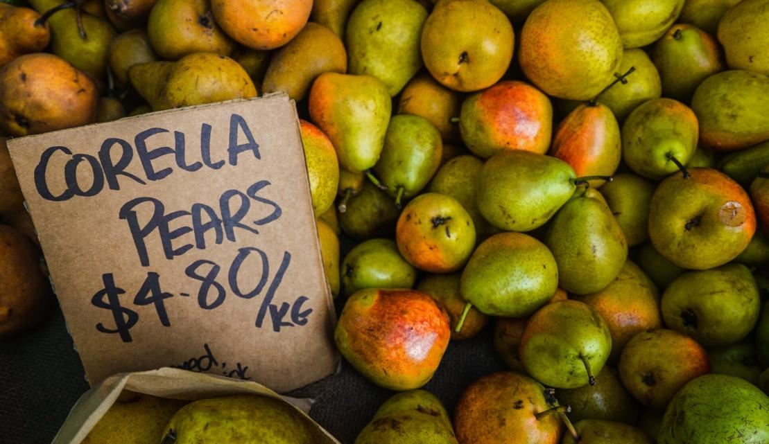 corella pear pricing