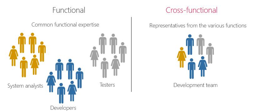 Function vs Cross functional teams.
