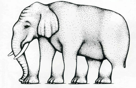 Elephant optical illusion.