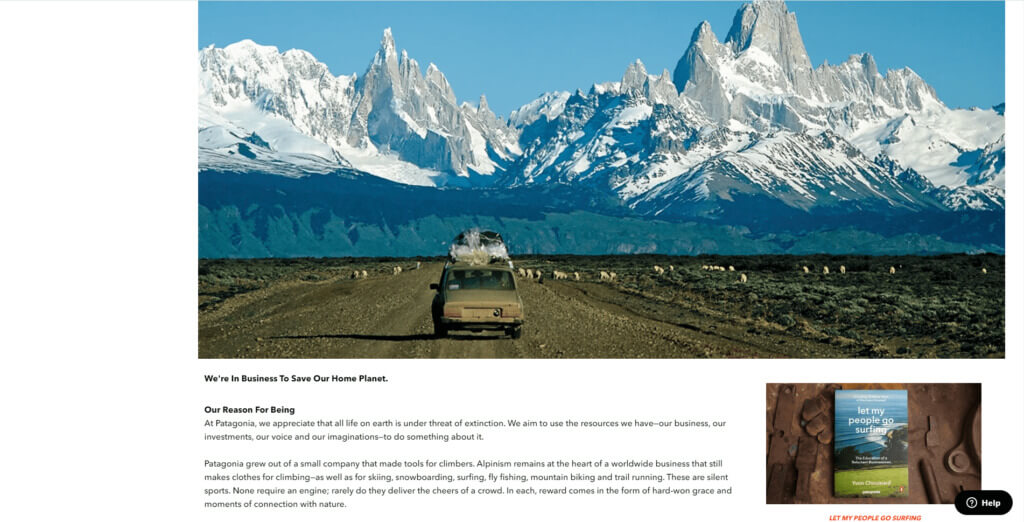 Patagonia home page screenshot