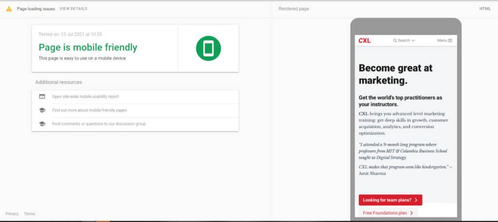 Screenshot of Google's Mobile-Friendly Test
