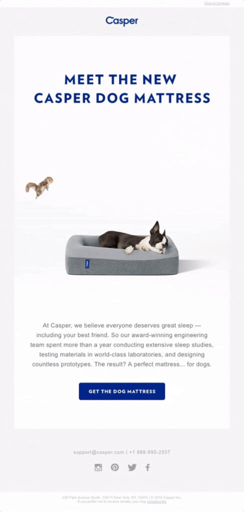 Casper product launch email
